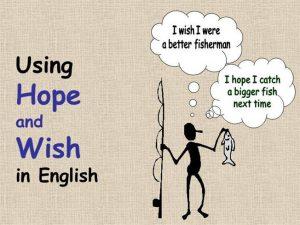 perbedaan penggunaan wish dan hope