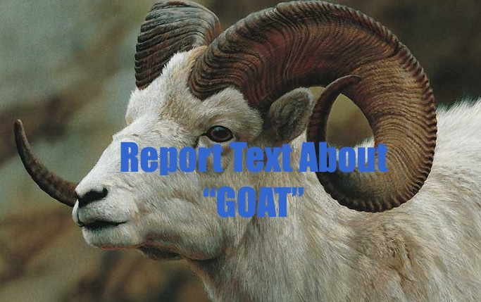 Contoh Report Text Goat Beserta Terjemahnya Studybahasainggris Com