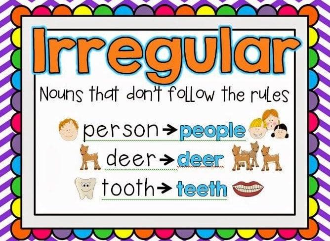 Irregular Plural Noun