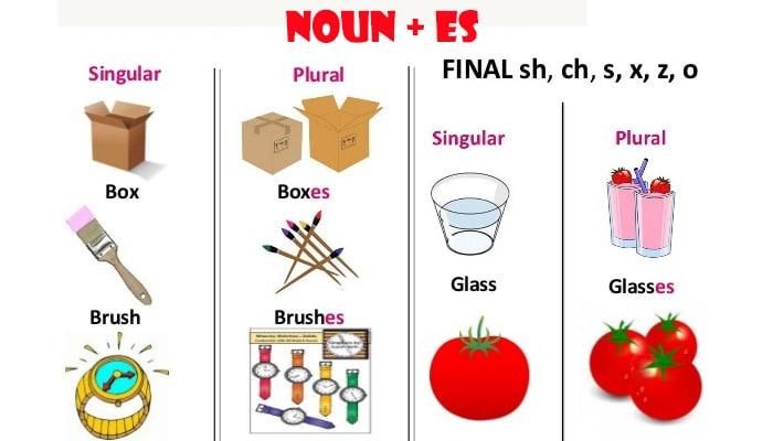 Noun+Es